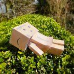 Cajas de cartón estilo amazon